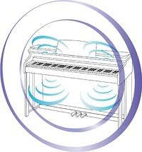 Kuyruklu Piyano Akustik Sistemi