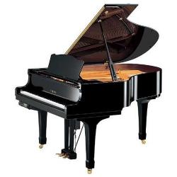 Akustik Disklavier Piyanolar