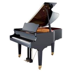 Akustik Kuyruklu Piyanolar